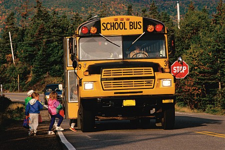 School Bus Passing Violations